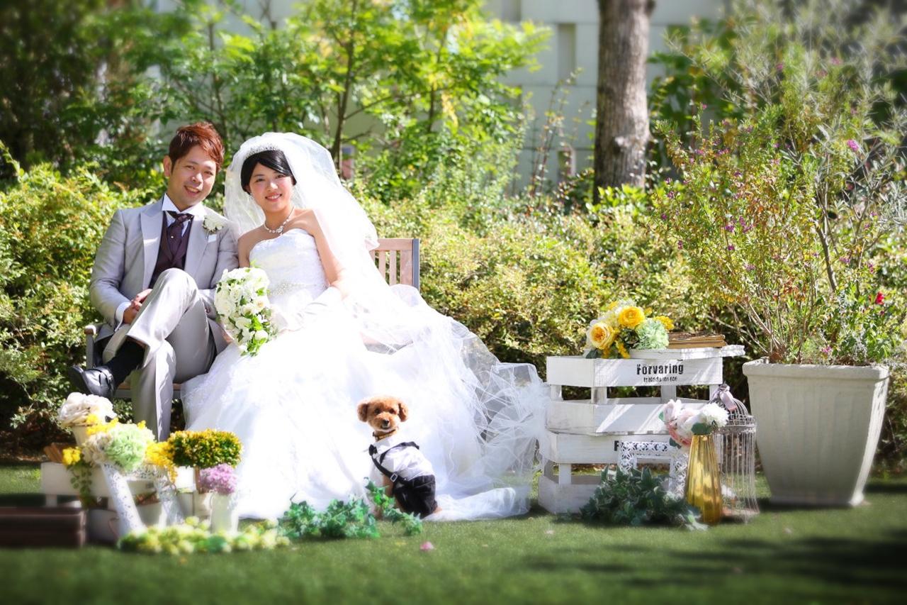 bb59feaf94cc0 新郎 かずやさん新婦 せなさんおふたりの愛犬 コットくん. 結婚式 ...